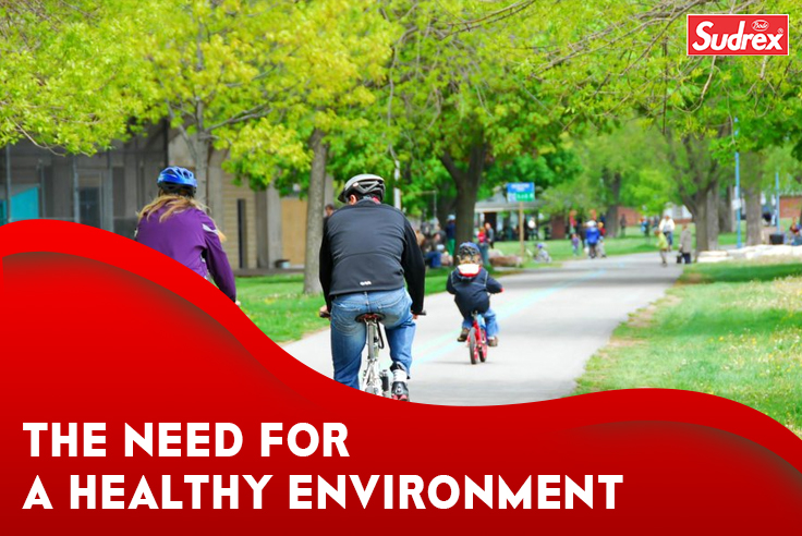 The Need For a Healthy Environment